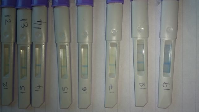 clearblue ovulation test instructions pdf