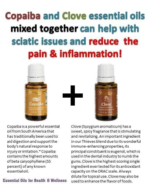 young living sign up instructions